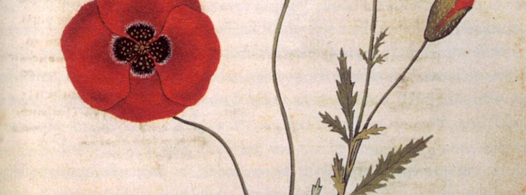 Songs of Love and War - Early Music Vancouver